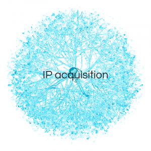 IP Acquisition